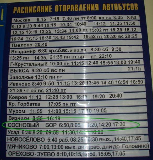 Автобусом - из Москвы от