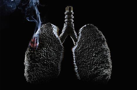 Табакокурение реферат Концепция общественной безопасности Бросить курить под силу каждому не все вероятно с этим согласятся т к уже пробовали сделают это и безуспешно Но пытались ли они разобраться в